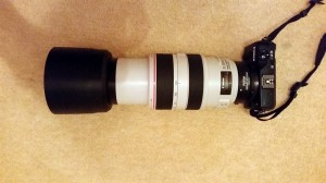 Just for a giggle here's my 70-300L mounted on the EOS-M