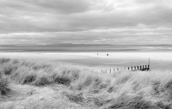 Moray Firth by Richard Cormack (2nd place)